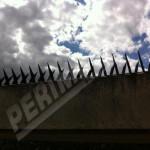 Lança para Muro: Casa segura com Concertina