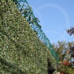 Concertina Dupla no diâmetro de 450mm Verde: veja as vantagens