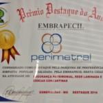 Perimetral recebe Prêmio Destaque do Ano