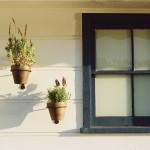 Proteja sua família: cerca Concertina para residências